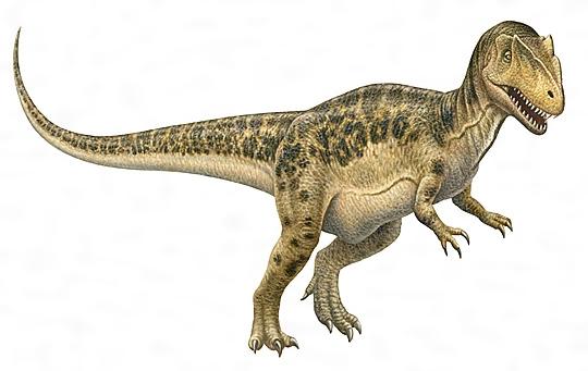 アロサウルスの復原図[百科マルチメディア]