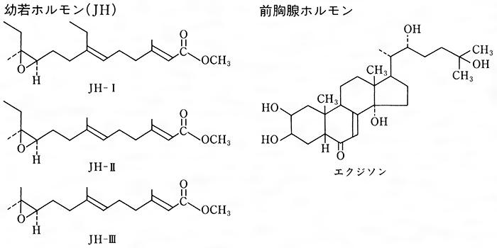 代表的なホルモンの化学構造(無脊椎動物―昆虫)[百科マルチメディア]