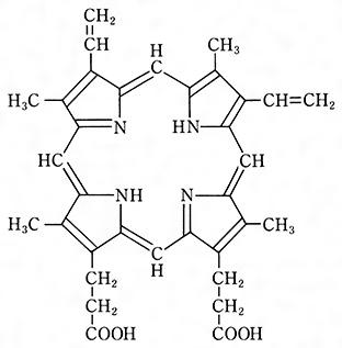 プロトポルフィリンの構造[百科マルチメディア]
