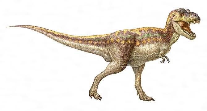 ティラノサウルスの復原図[百科マルチメディア]